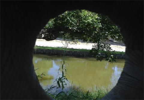亀城公園_05.jpg